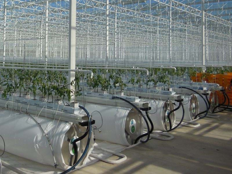 Eco greenhouse - Gakon Horticultural Projects - Turn-key Greenhouse Projects