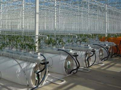 Energy Climate Optimized greenhouse - Gakon Horticultural Projects - Turn-key Greenhouse Projects