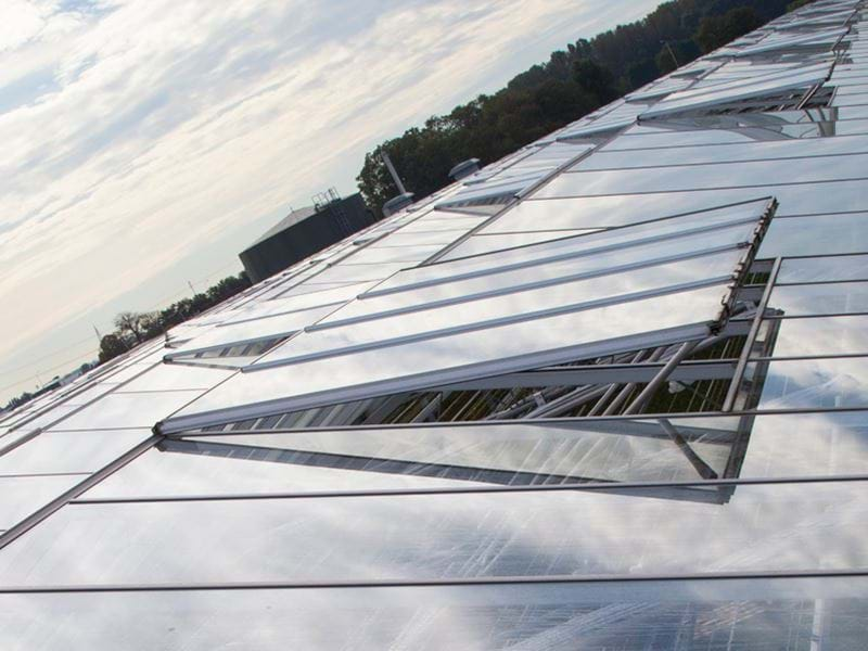 Solis Plant greenhouse roof - Gakon Horticultural Projects - Turn-key Greenhouse Projects