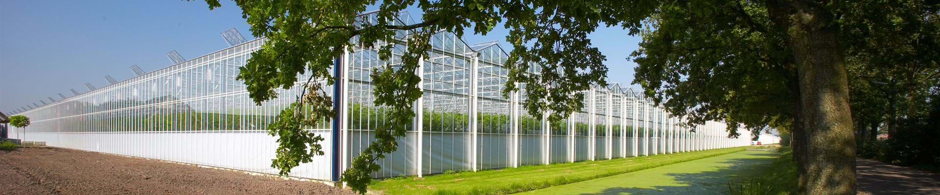 Glastuinbouw - Gakon Horticultural Projects - Turnkey kassenbouwprojecten