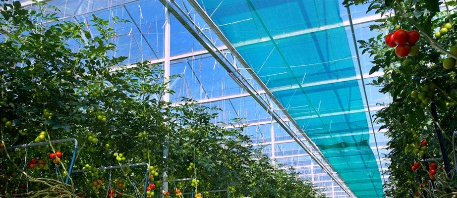 Scherminstallaties - Gakon Horticultural Projects - Turnkey kassenbouwprojecten