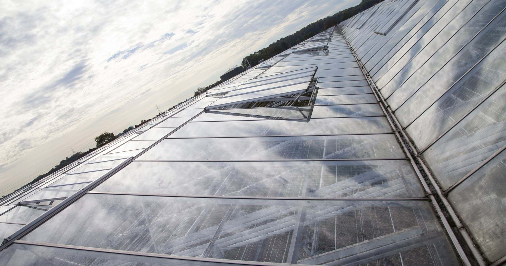 Solis plant Heenweg - Gakon Horticultural Projects - Turn-key Greenhouse Projects