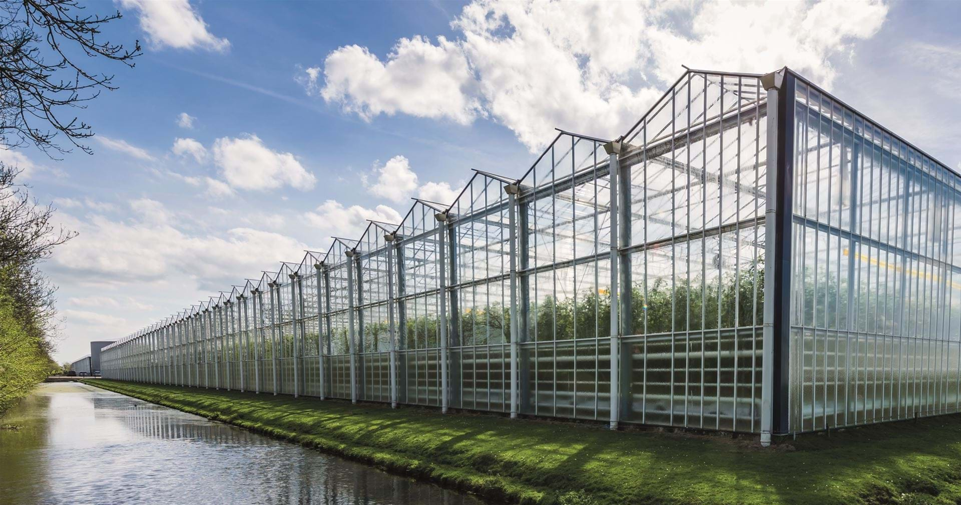 Turn-key greenhouse for peppers - Gakon Horticultural Projects - Turn-key Greenhouse Projects