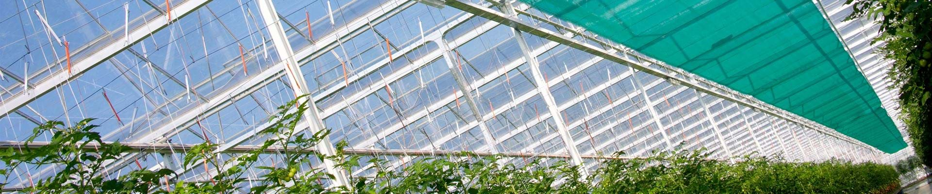 Screens - Gakon Horticultural Projects - Turn-key Greenhouse Projects