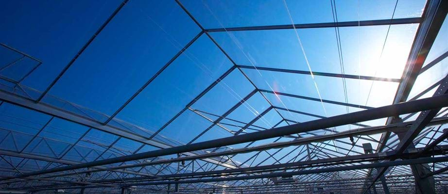 Greenhouse roof - Gakon Horticultural Projects - Turn-key Greenhouse Projects
