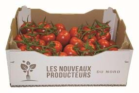 Reo Veiling Les nouveaux producteurs - Gakon Horticultural Projects - Turnkey kassenbouwprojecten