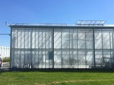 Bejo Zaden (1) - Gakon Horticultural Projects - Turn-key Greenhouse Projects
