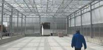 Böhm 3 - Gakon Horticultural Projects - Turn-key Greenhouse Projects
