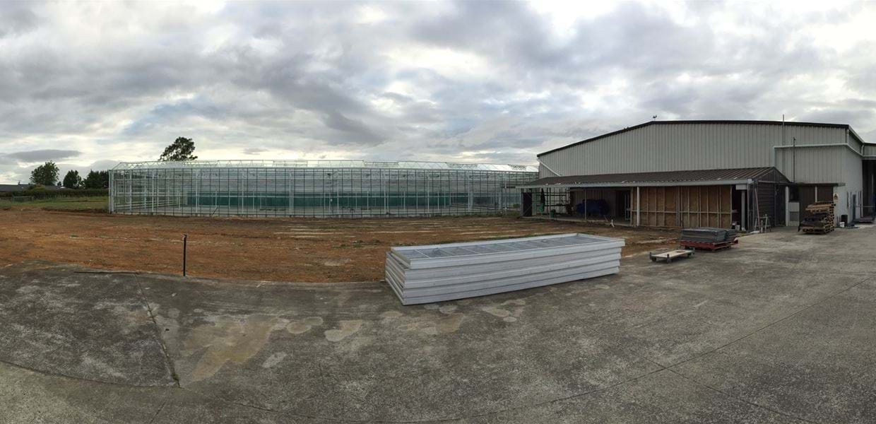 Gellert Nurseries (1) - Gakon Horticultural Projects - Turnkey kassenbouwprojecten