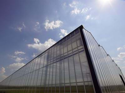 Hennicke 1 - Gakon Horticultural Projects - Turn-key Greenhouse Projects