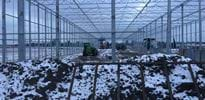 Hennicke 5 - Gakon Horticultural Projects - Turn-key Greenhouse Projects