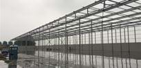 Kroon en de Koning (2) - Gakon Horticultural Projects - Turnkey kassenbouwprojecten