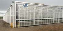 S_A (3) - Gakon Horticultural Projects - Turn-key Greenhouse Projects