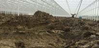 S_A (5) - Gakon Horticultural Projects - Turn-key Greenhouse Projects