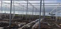 Sippel 2 - Gakon Horticultural Projects - Turnkey kassenbouwprojecten