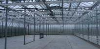 Jahnataler (3) - Gakon Horticultural Projects - Turn-key Greenhouse Projects