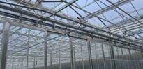 Jahnataler (4) - Gakon Horticultural Projects - Turn-key Greenhouse Projects