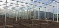 Rovak BVBA (3) - Gakon Horticultural Projects - Turn-key Greenhouse Projects