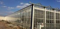 Simonato (3) - Gakon Horticultural Projects - Turn-key Greenhouse Projects
